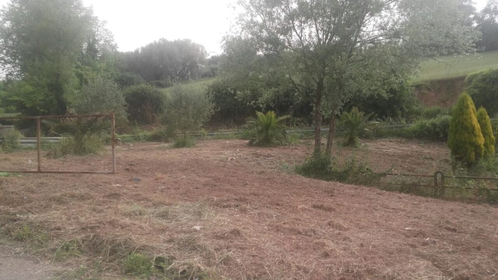 (Foto Area del Cao ripulita prima della Giornata Ecologica di Sabato 13 Maggio)